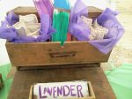our yummy lavender pillows in a cool old chest that SPore has been saving