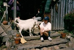 Me and the goats - Akaroa