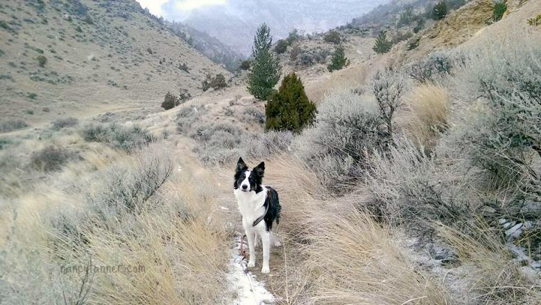 rhumbs 1st hike